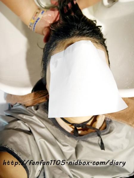 【台北東區染髮】H color 平價染髮片染挑染結構式護髮資生堂染劑 (32).JPG