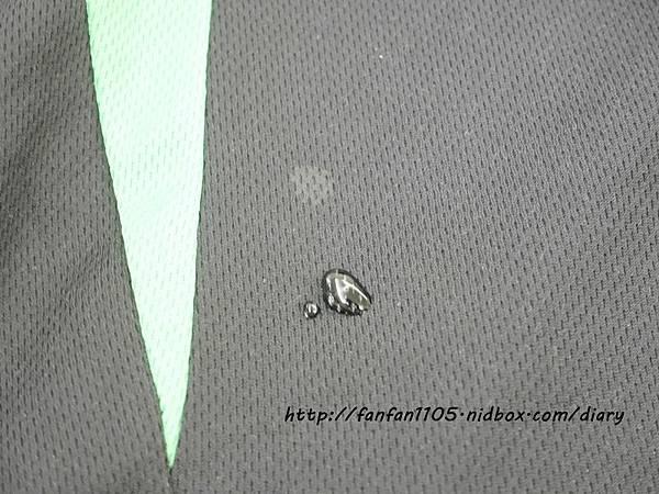 Trigreen 香甜蘋果洗碗精 高效濃縮洗衣精 綠色環保洗衣精、洗碗精 排汗衫專用洗衣精  (26).JPG