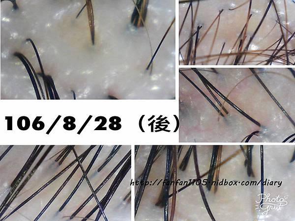 【新北新店染髮】加慕秀Jair salon安康店 髮型改造 護髮 燙髮 頭皮護理 (25).jpg