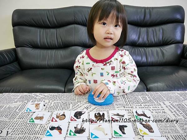 【RUNALAND】聲音點點名(動物版)-美好桌上時光 親子桌遊 (10).JPG