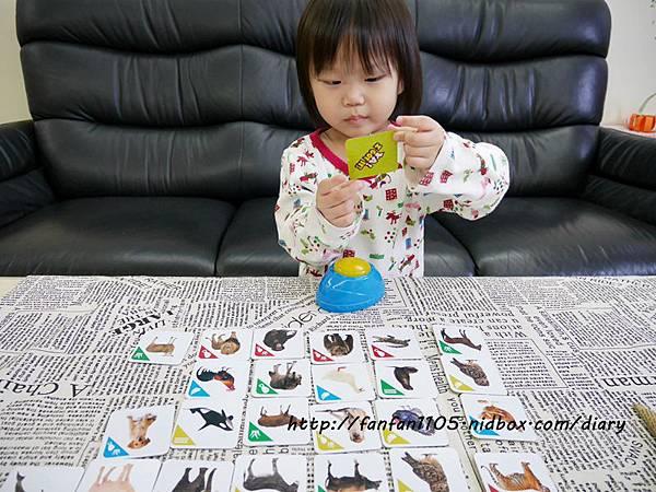 【RUNALAND】聲音點點名(動物版)-美好桌上時光 親子桌遊 (9).JPG