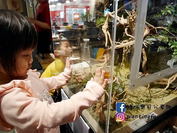 【南港車站美食】雲豪斯 WiNHOUSE 無國界創意料理 親子友善餐廳 (28).JPG