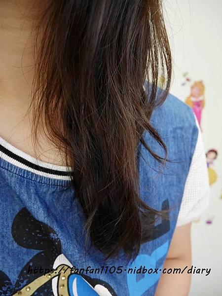【Enuca】伊努卡輕感控油洗護組 輕感控油洗髮精 純淨修護素 #洗髮 #潤髮 #控油 #保濕 #頭髮毛燥 #分岔 #染燙髮  (3).JPG