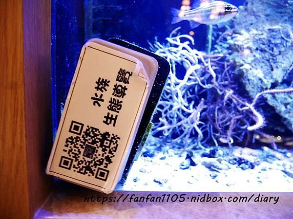 【新北美食】慕拉諾義式餐廳 Murano #高CP值 #約會餐廳 #生態魚缸#新莊美食 #平價義式餐廳 #義式料理 (8).JPG