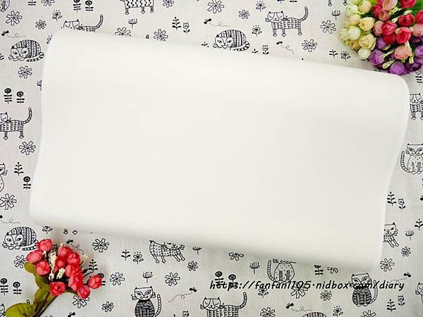 【GreySa格蕾莎】兒童環保記憶枕 專為5~12歲兒童設計 #台灣製造 側睡仰睡都適合 (5).JPG