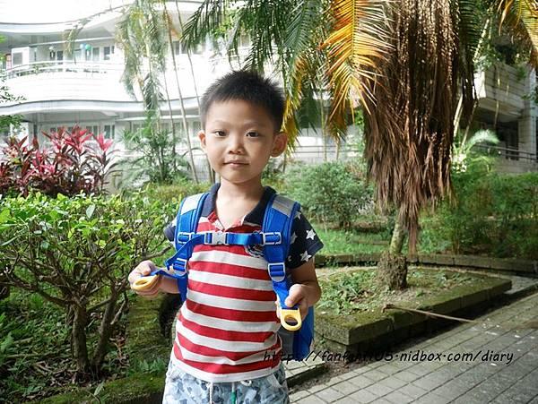 【impact 怡寶】兒童護脊書包 Cuty sugar 彩糖系列 #輕量護脊書包 #護脊書包 (8).JPG