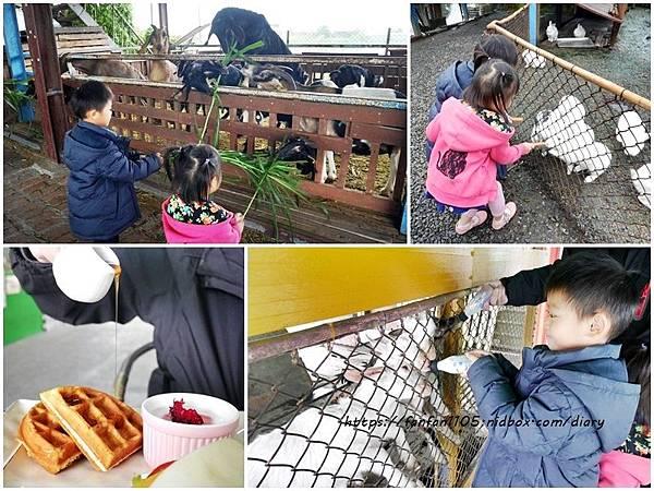 【宜蘭景點】可達羊場 #餵小動物 #羊奶冰淇淋DIY #羊奶下午茶 #宜蘭員山 #宜蘭親子景點 (37).jpg
