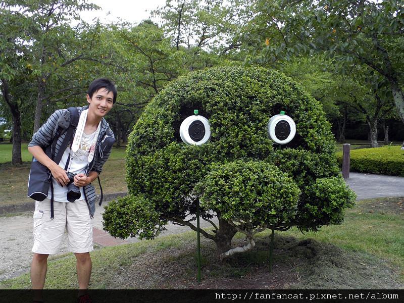 惠比壽造型樹