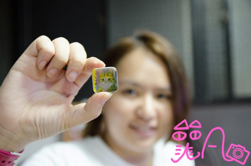 DSC_0042_副本.jpg
