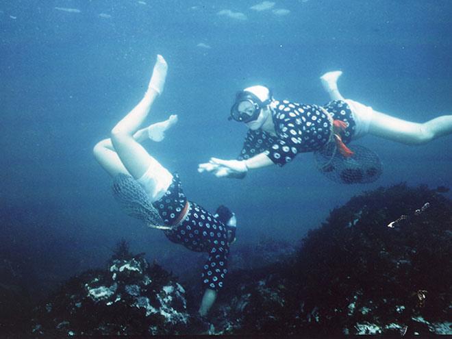 D4-海女潛水.jpg