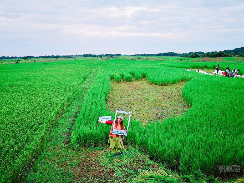【東海岸部落工作假期】一起雙浪金剛 為馬拉松跑者加油 享用金剛稻田餐桌