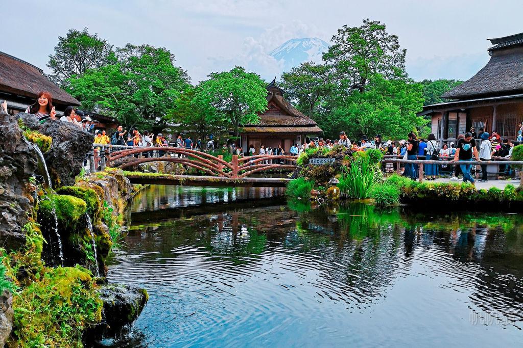 【東京出發】河口湖、富岳風穴、鳴沢冰穴、忍野八海 富士山一日遊