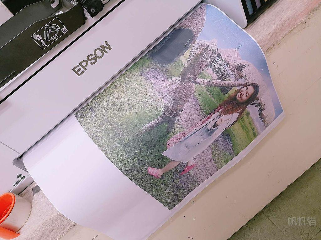 客製化抱枕熱昇華圖紙列印-熱昇華印表機推薦