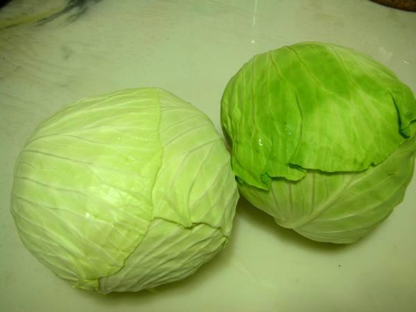 鴉片泡菜之1 高麗菜.JPG