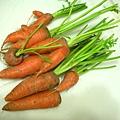胡蘿蔔酸甜醬1.JPG