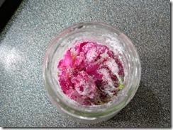 鹽醃櫻花3