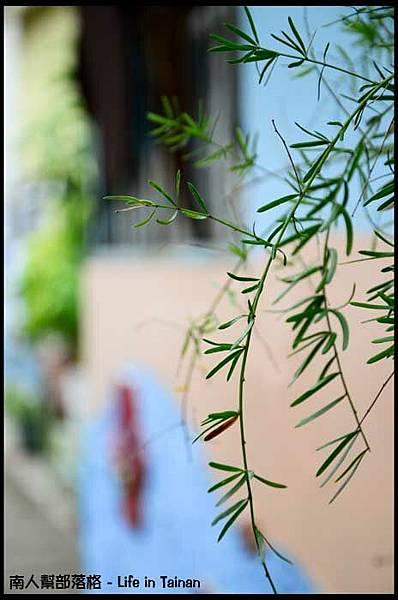 劍獅花巷-06.jpg
