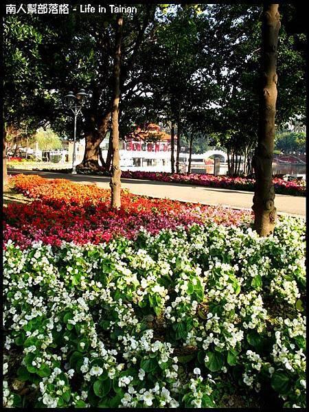 2012台南百花祭19.jpg