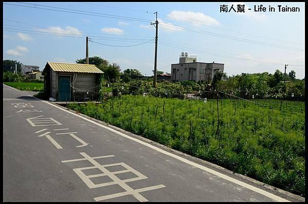 田尾公路-03