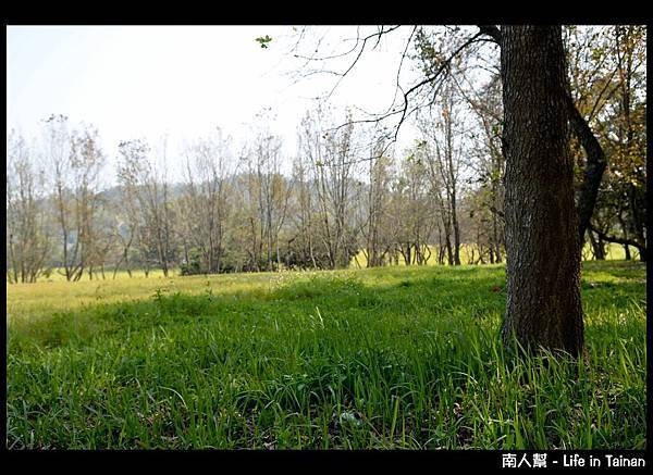 走馬瀨農場-09
