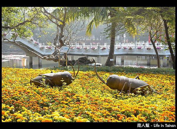 2013台南百花祭-25