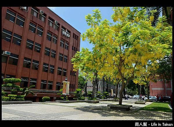 國立臺南大學 - 2013阿勃勒節05