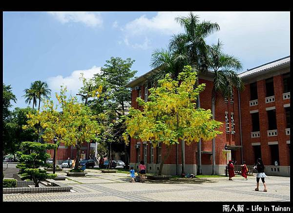 國立臺南大學 - 2013阿勃勒節10