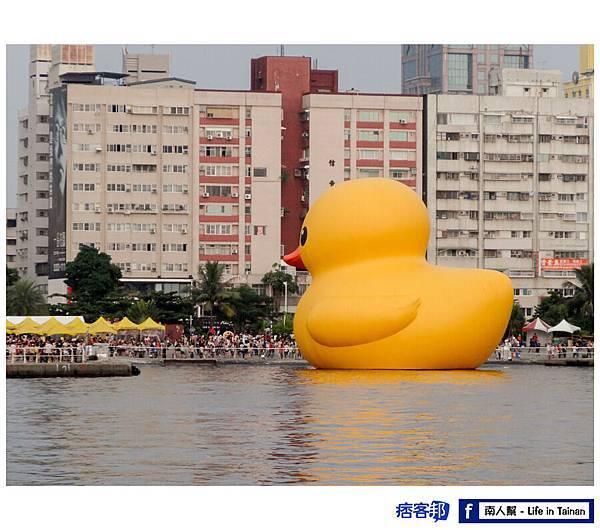 黃色小鴨高雄