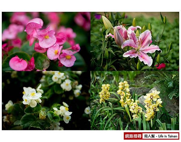 2014臺南百花祭-18.jpg