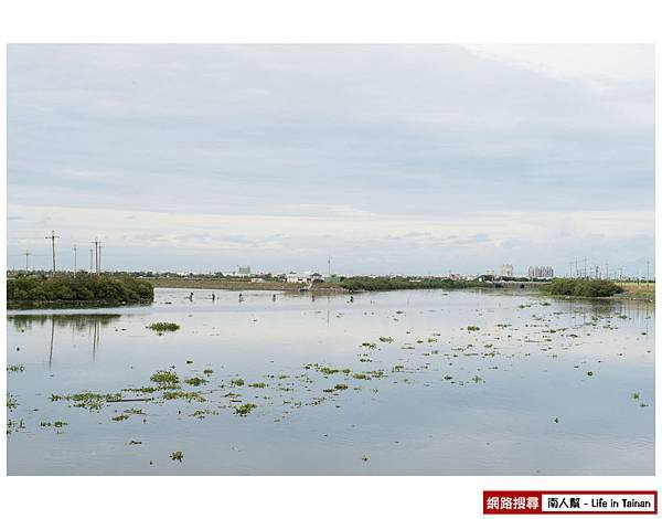 (07)嘉南大圳大排水道旁(接府安路段)