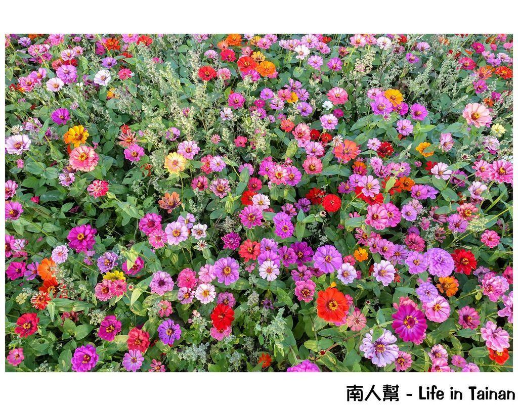13.台灣詩路-30.jpg