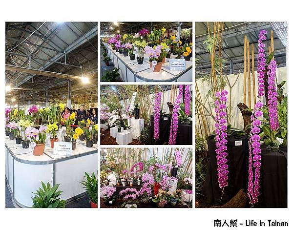 2017臺灣國際蘭展
