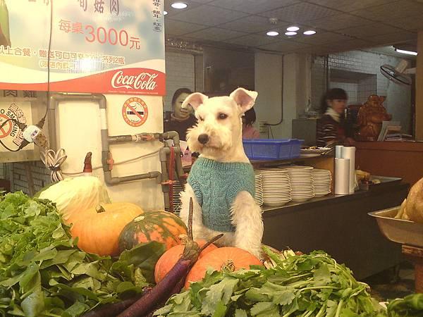 賣菜的狗.JPG