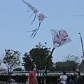 #  这风筝好像一条龙, me在后海,荷花市场入口拍的