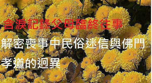 1323013868-654950901_n[1].jpg