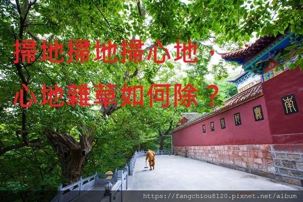 TB2N5FedHsTMeJjy1zbXXchlVXa_!!0-travel[1].jpg