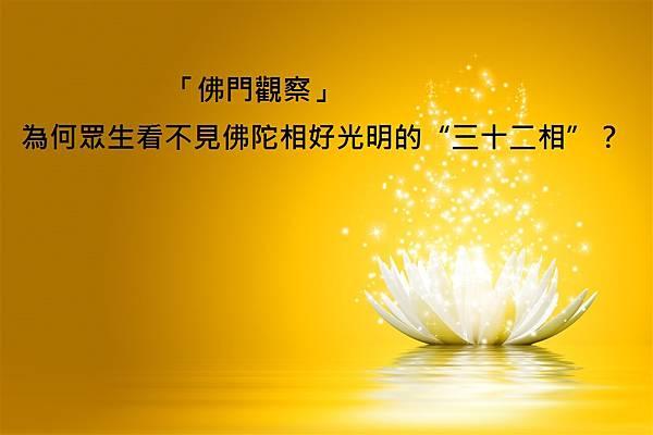 tooopen_sy_164086957373[1].jpg