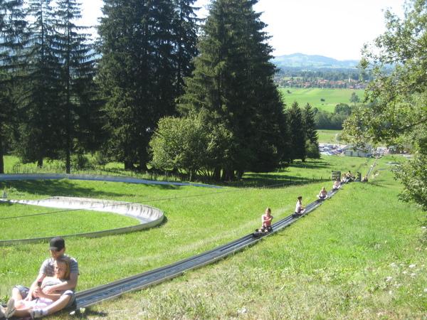 在南德跟奧地利山區很流行的滑草