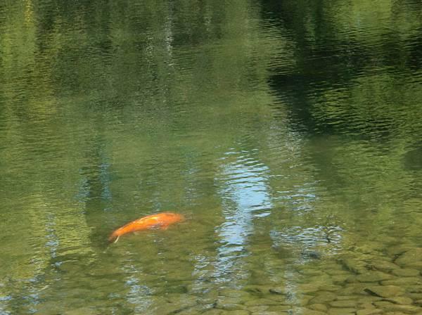 2012-09-27 Kyoto (233)