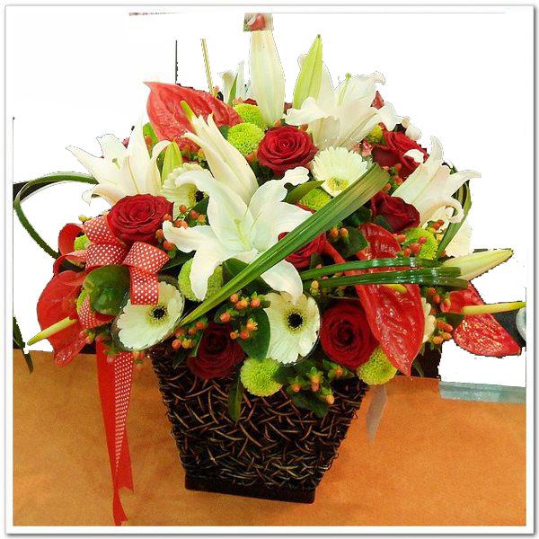 b55643568盆花4-1.jpg