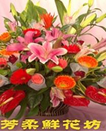 盆花2.jpg