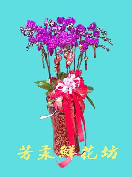 15年蘭花禮盆-5.jpg