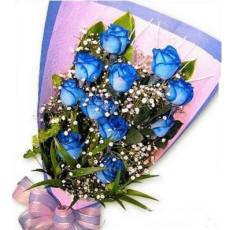 蓝玫瑰花束12.jpg