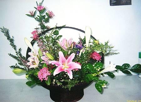盆花6.JPG