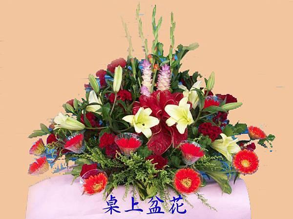 盆花5.jpg