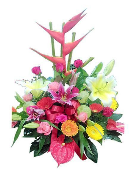 盆花11.jpg