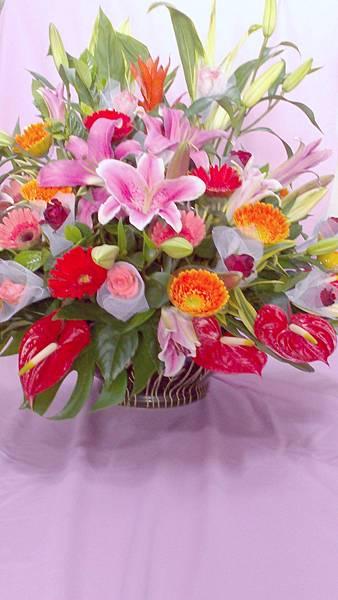 盆花9.jpg