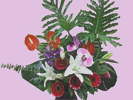 盆花15.jpg