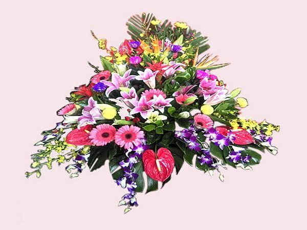 盆花19.jpg