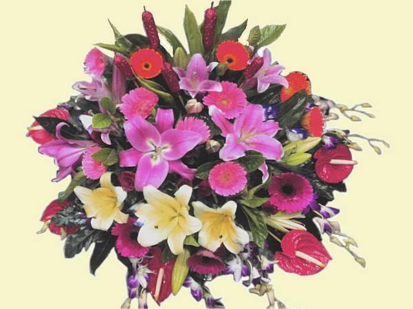 盆花18.jpg